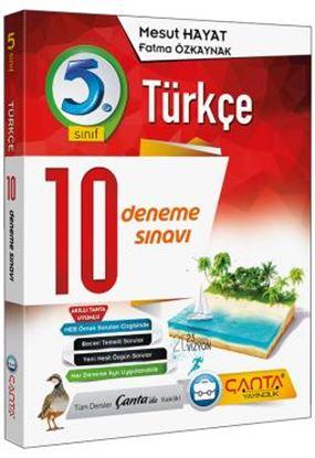 5. Sınıf Deneme 10 Türkçe 2019 -14.90