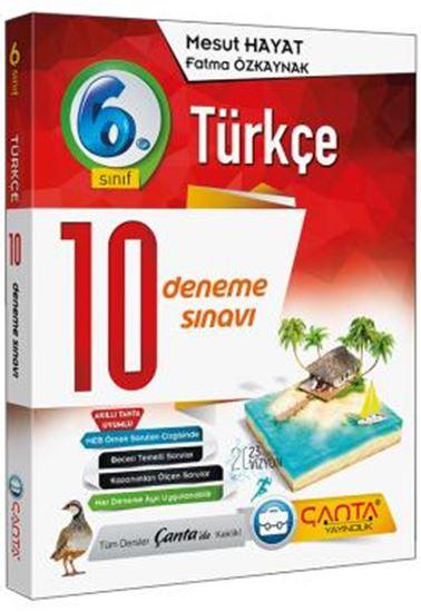 6. Sınıf Deneme 10 Türkçe 2019 -14.90